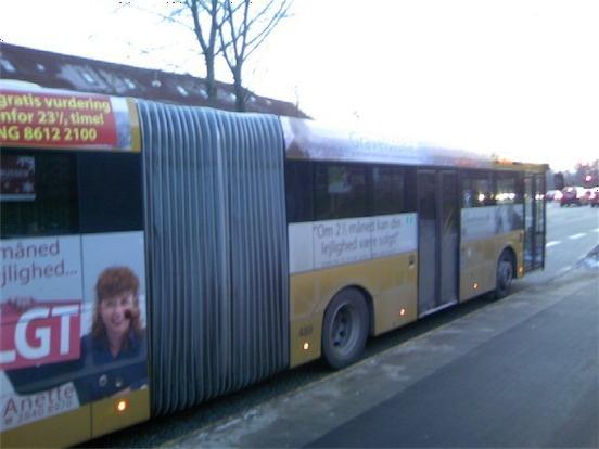 デンマークの長いバス