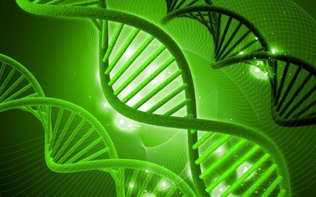 遺伝子の歴史を解明する事で、この世界から病気は無くなる!?_2