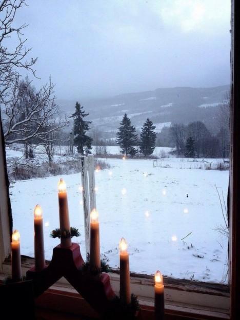 安保さん雪景色