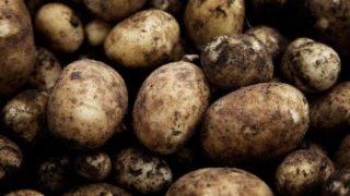 not_potato1